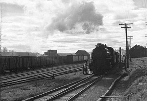 Caribou 1940